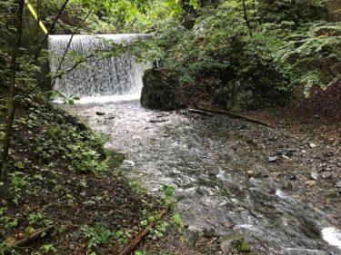 渡良瀬水系「K中川」・「K坂石川」釣行記 (2019年8月下旬)