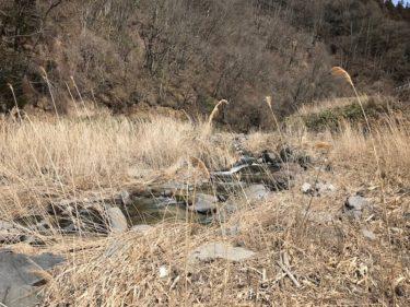 利根漁協協同組合管轄の「大立沢川」「赤倉川」釣行記(2020年3月下旬)