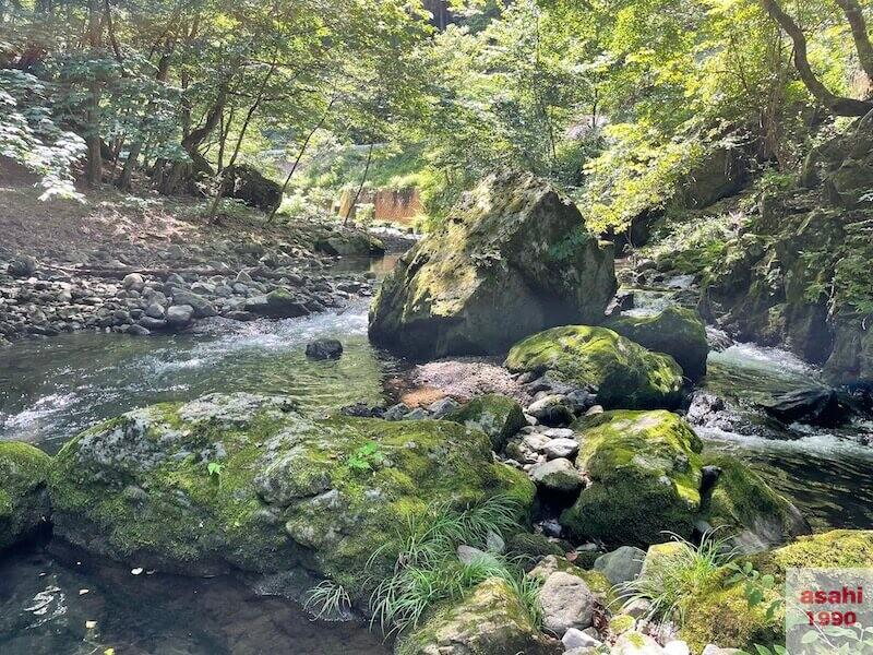 本谷 神流川 釣り 岩