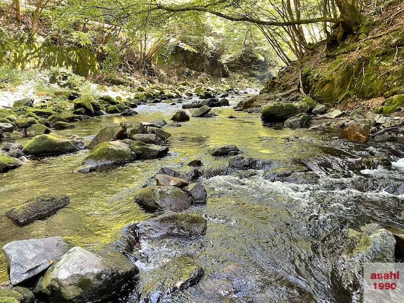 本谷 神流川 釣り 渓流