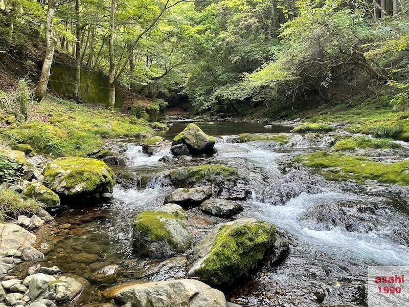 本谷 神流川 釣り渓流