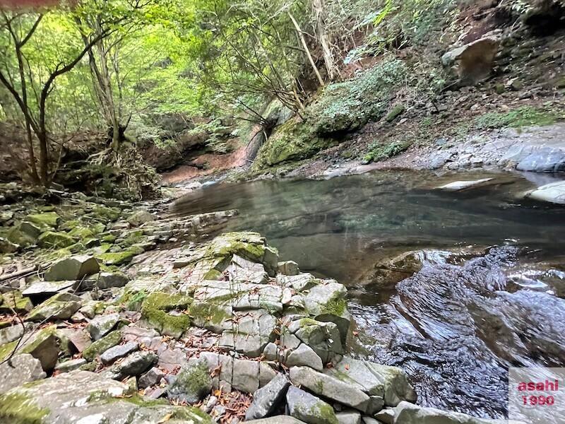 本谷 神流川 釣り緩い流れ