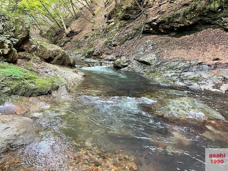 本谷 神流川 釣り大岩