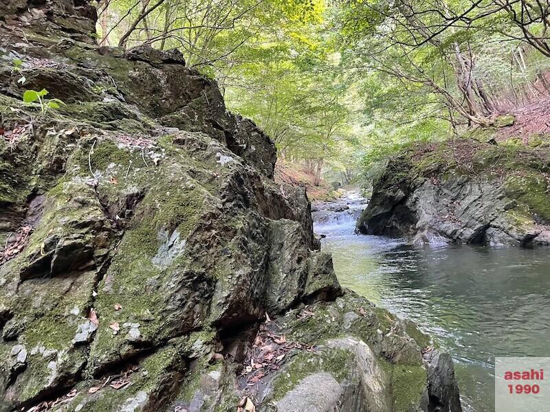 本谷 神流川 釣り 道