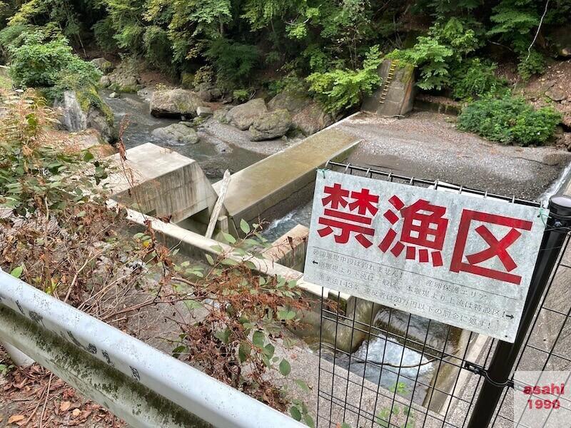 神流川 禁漁