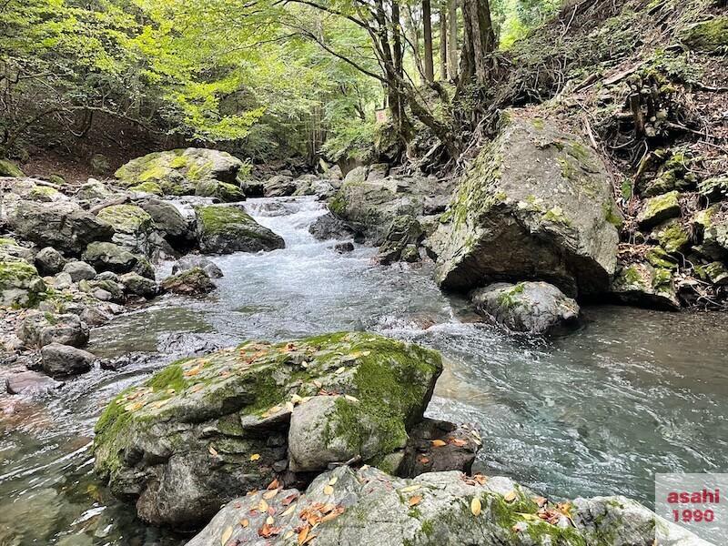 神流川-中ノ沢-釣り-ポイント